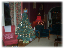 Comfortable seating, seasonally dressed Christmas tree